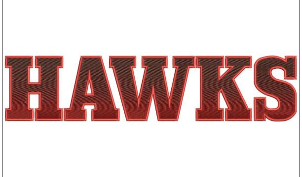 Hawaks Sleeve Logo